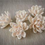 Virágfejek
