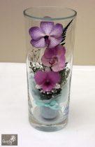 Lila Orchidea